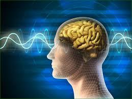 réparer hypnose alençon orne sans-titre